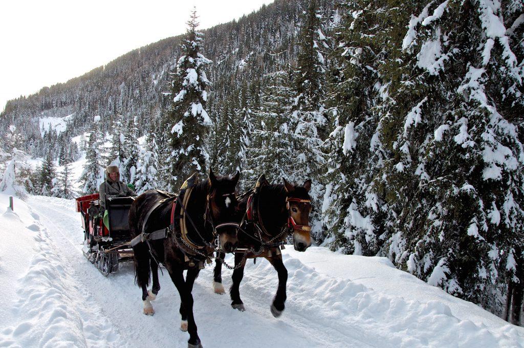Winkeltal Winter   Außervillgraten   Villgratental