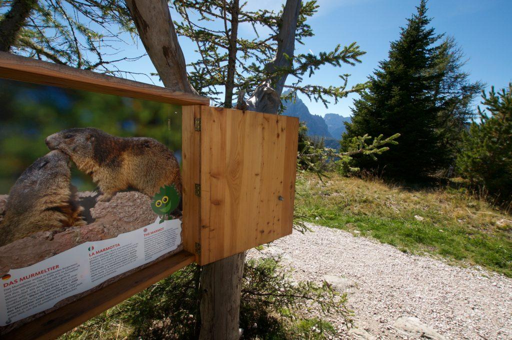 Olperls Bergwelt | Helm | Südtirol